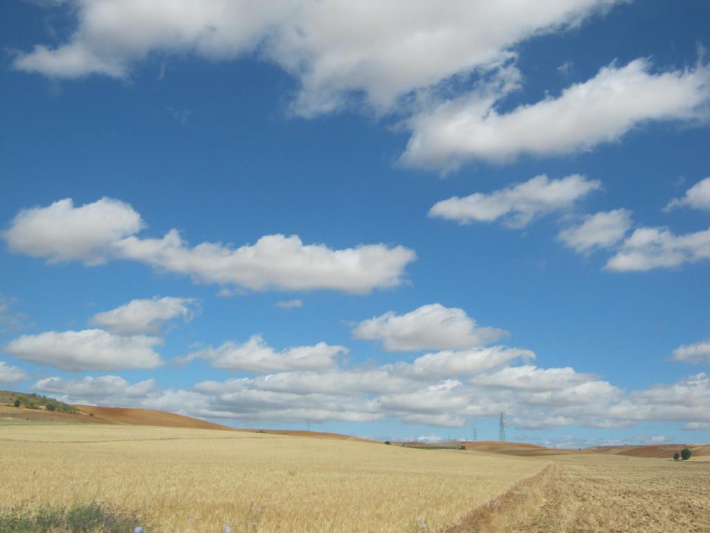 Daganzo hills